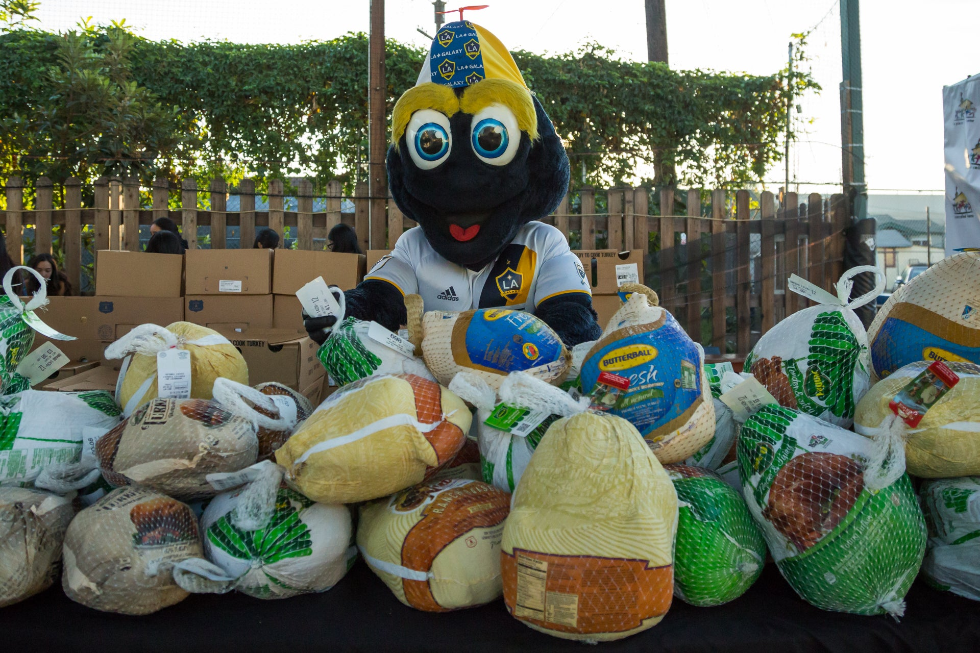 More Info for StubHub Center Foundation and LA Galaxy Foundation to host 14th Annual Thanksgiving Foundations' Feast